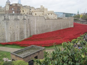88,000 poppies (not puppies as Len thought I said) flowing like blood around the Tower of London, representing the soldiers who have died. They will be sold at £25 each and will raise £15 for charity.